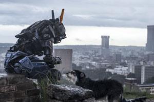 Brigada robotizada