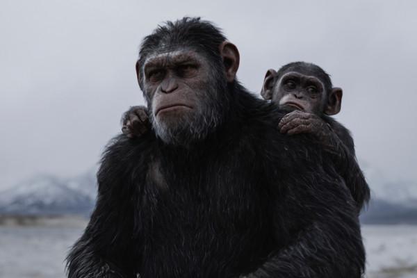 Ape Pocalypse Now