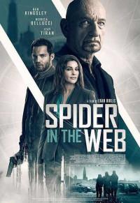 La trampa de la araña