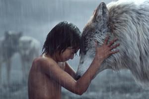 Mowgli y sus amigos