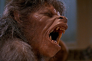 An American Werewolf in London Wolf0