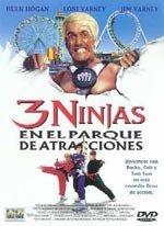 3 ninjas en el parque de atracciones (1998)