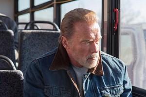 Schwarzenegger llora
