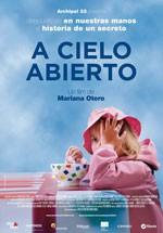 A cielo abierto (2013)