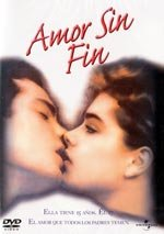Amor sin fin (1981)