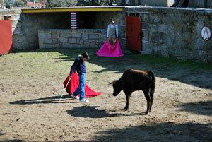 Los toros vistos por un austriaco