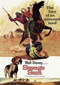 Aventura en el Oeste (1963)