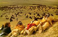 La caza del búfalo