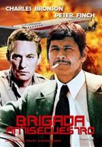 Brigada antisecuestro (1976)