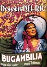 Bugambilia (1945)