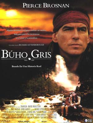Búho Gris (1999)