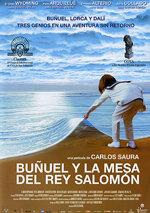 Buñuel y la mesa del rey Salomón (2001)