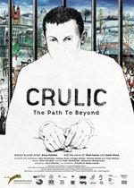 Crulic, camino al más allá (2011)