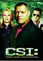 CSI: Las Vegas (10ª temporada) (2010)