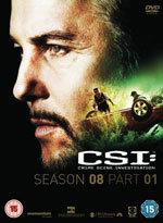 CSI: Las Vegas (8ª temporada) (2007)