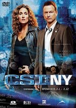 CSI: NY (2ª temporada)