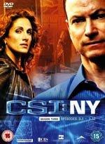 CSI: NY (3ª temporada)