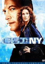 CSI: NY (6ª temporada) (2009)