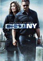 CSI: NY (5ª temporada) (2008)