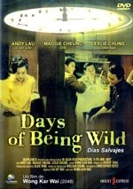 Days of Being Wild (1991)