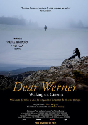 Dear Werner