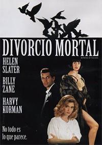 Divorcio mortal (1993)