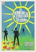 El amor se cosecha en verano (1964)