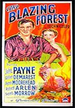El bosque en llamas