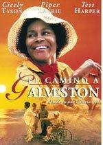 El camino a Galveston