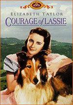 El coraje de Lassie (1946)