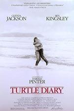 El diario de la tortuga
