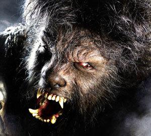 La mansion wolfberg online dating 10
