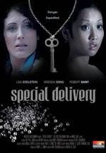 Entrega especial (2008)