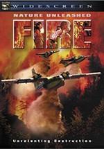 Fire: atrapados por la muerte (2004)