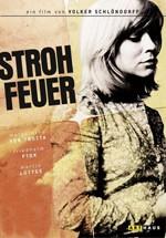 Fuego de paja (1972)