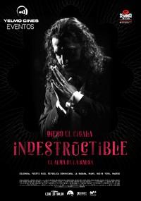 Indestructible, el alma de la salsa (2017)