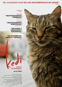 Kedi (Gatos de Estambul) (2016)