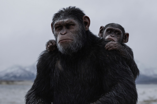 Ape Pocalypse Now