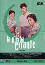 La hierba errante (1959)
