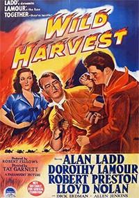 La mujer disputada (1947)