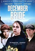 La novia de diciembre (1991)