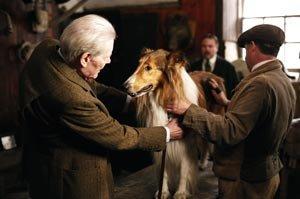 Liberad a Lassie
