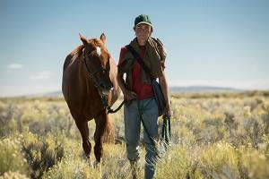 Horse movie