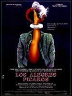 Los alegres pícaros (1988)