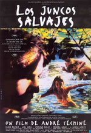 Los juncos salvajes (1994)
