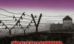 Más allá de la alambrada: La memoria del horror. Españoles en Mauthausen 1939-1945