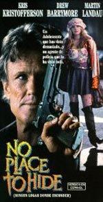 Persecución sin tregua (1993)