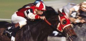 Pequeño gran caballo