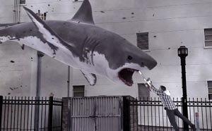 Tiburones en Los Ángeles