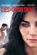 Sombras en la mirada (2010)